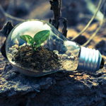 Sustainability As The New Normal: Why Businesses Have To Reconsider Their Practices
