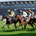The UK has its fair share of special events in the horse racing world, but one of the most exciting and luxurious is Royal Ascot.